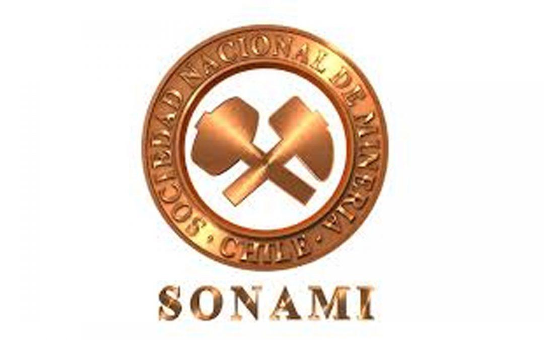 Sonami designa a nuevo secretario general